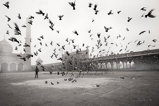 Jama Masjid old Delhi India