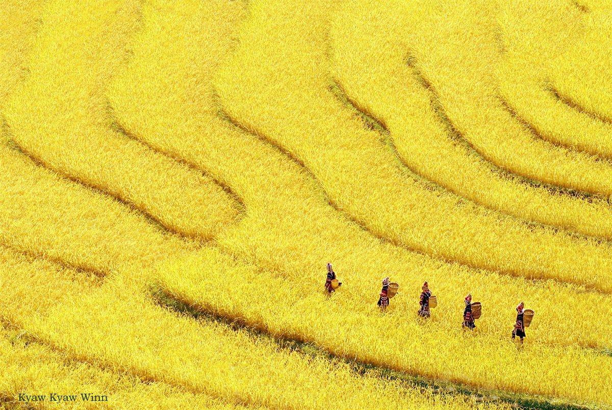 10.-Kyaw-Kyaw-Winn-Golden-Triangle-Burma