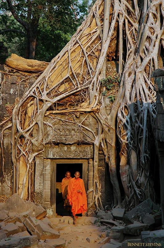 Bennett-Stevens_Ta-Prohm_Cambodia-_2005