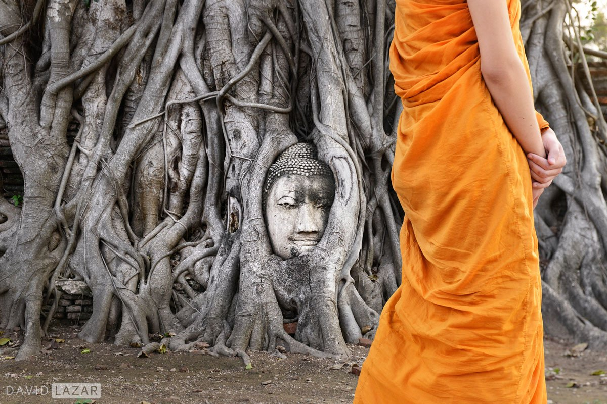 Monk passing by the Buddha roots image at Ayutthaya during a Southeast Asia photo tour workshop