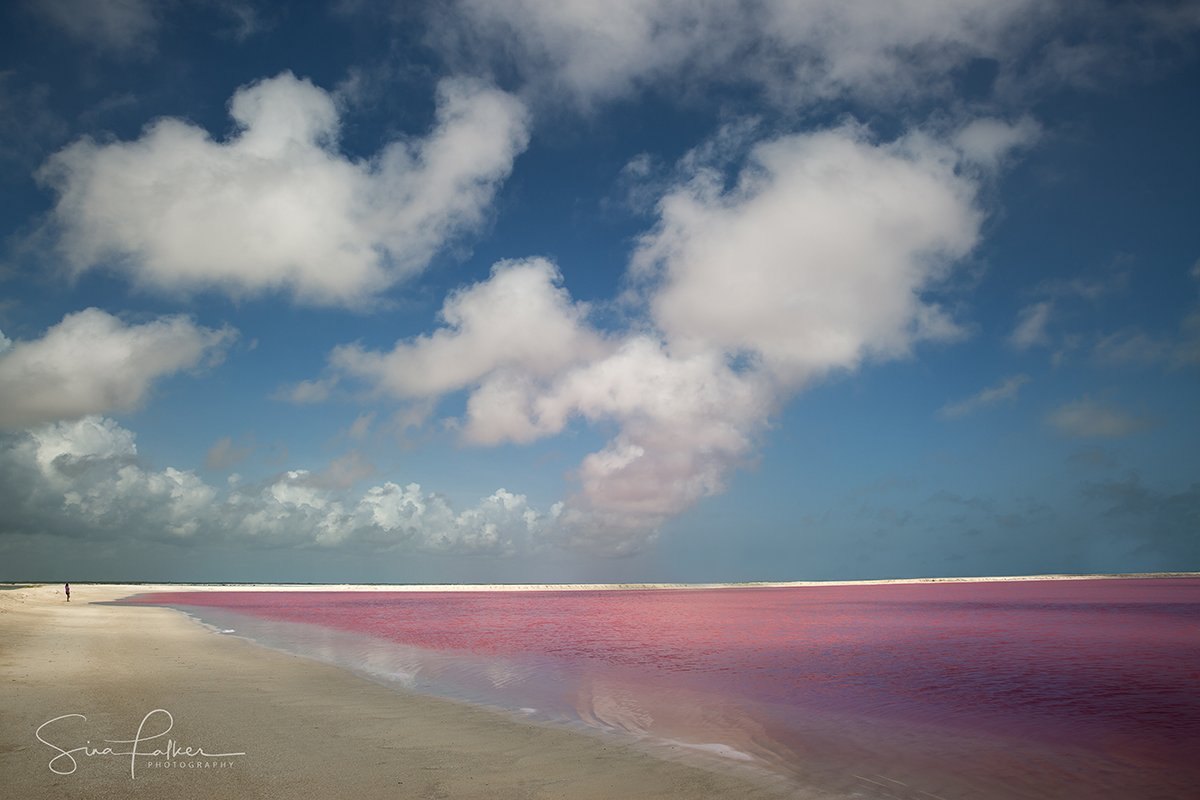 The unique pink lakes of Mexico taken on Luminous Journeys photo tour