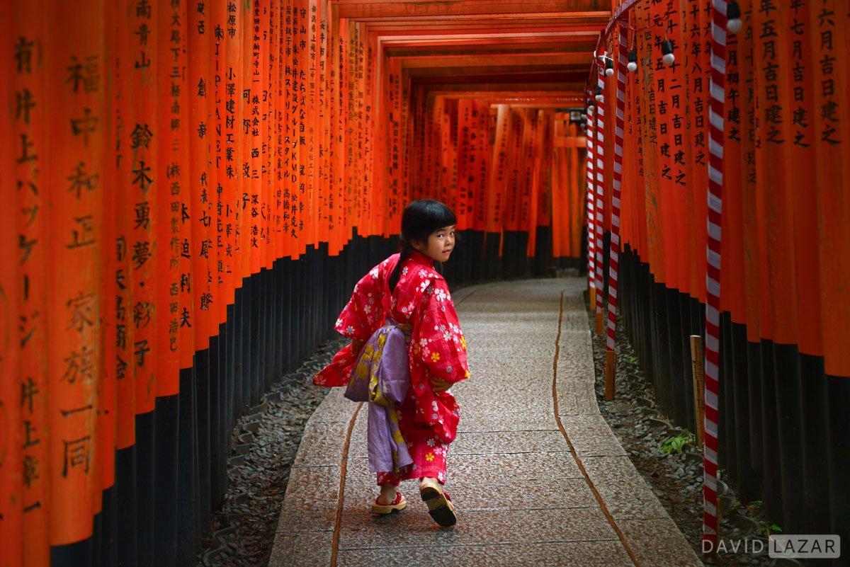 Torii Gates Japan winter photo tour