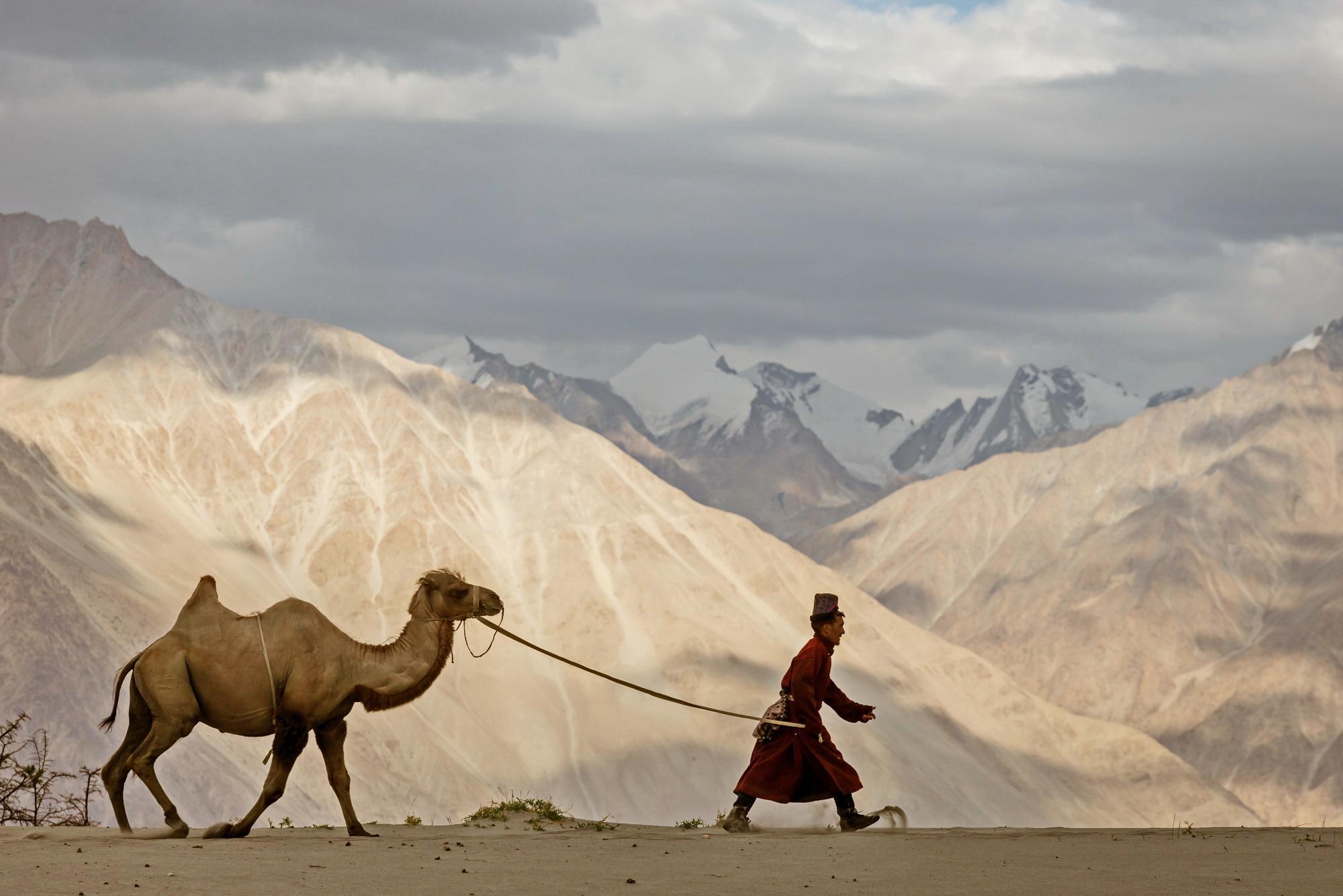 Nomad-Ladakh-Susan-Flickinger
