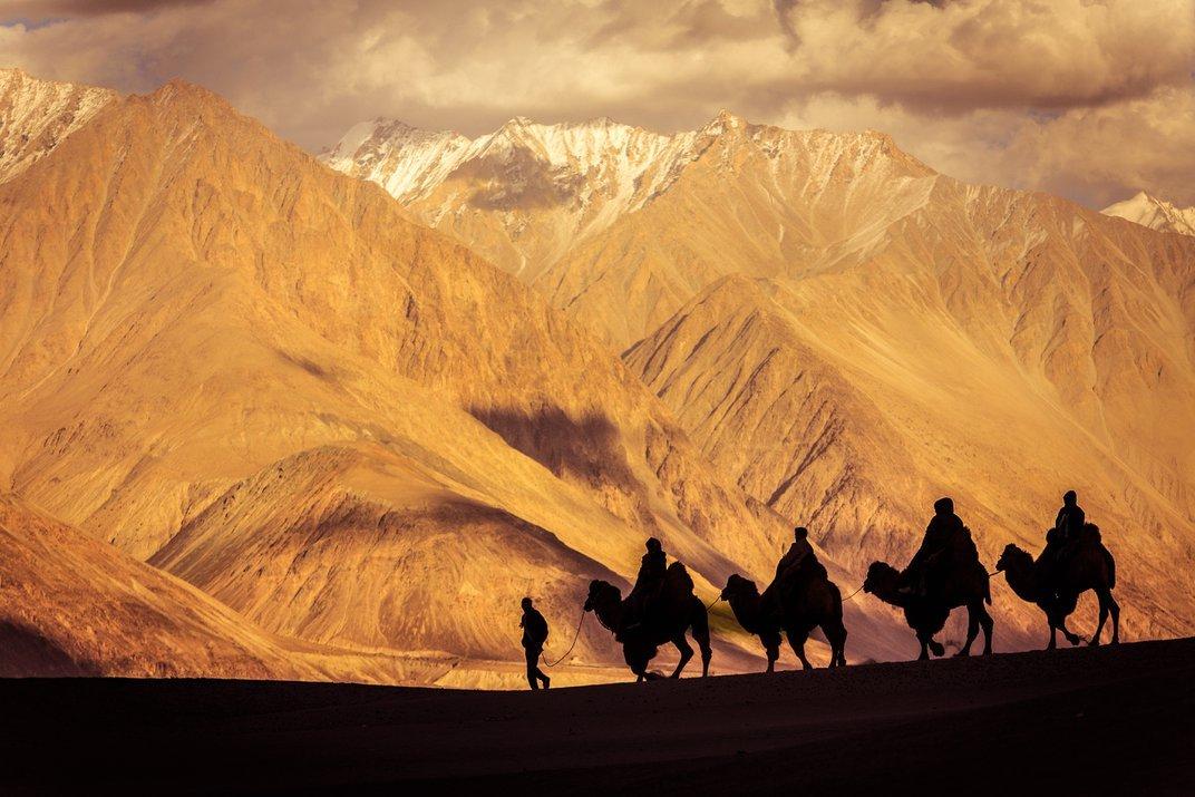 Ladakh-Nubra-Shikharesh Das_Luminous Journeys